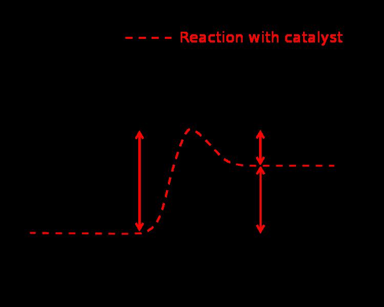 Cellular respiration ccuart Gallery